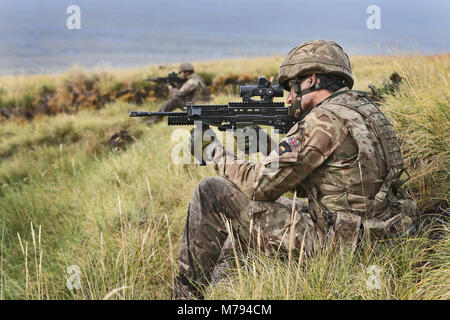 Para's on the Onion Range MOD 45163595 - Stock Photo