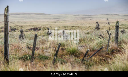 Para's on the Onion Range MOD 45163598 - Stock Photo