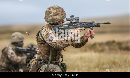 Para's on the Onion Range MOD 45163600 - Stock Photo