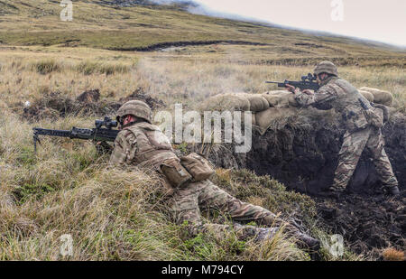Para's on the Onion Range MOD 45163586 - Stock Photo
