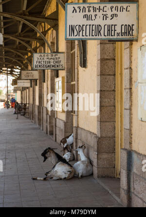Old sign of the station managers in the ethio-djibouti railway station, Dire dawa region, Dire dawa, Ethiopia - Stock Photo