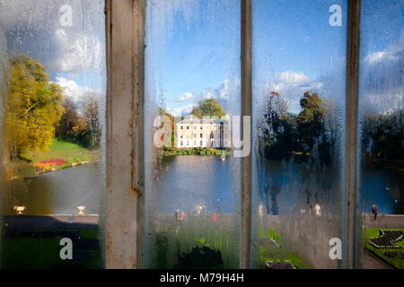Museum No.1 building pictured through misted windows of Palm House greenhouse at Kew Gardens  botanical garden in - Stock Photo