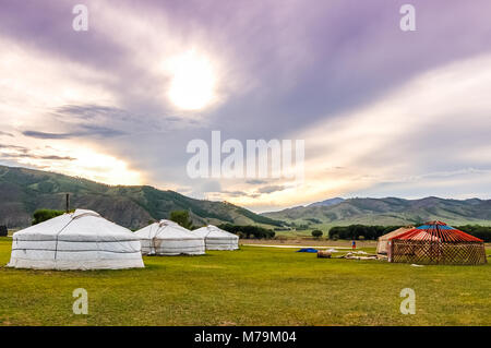 Constructing a Mongolian yurt called a ger on central Mongolian steppe - Stock Photo