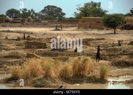 Young boys making mud bricks in a small, rural village. Mopti Region, Mali, West Africa. - Stock Photo