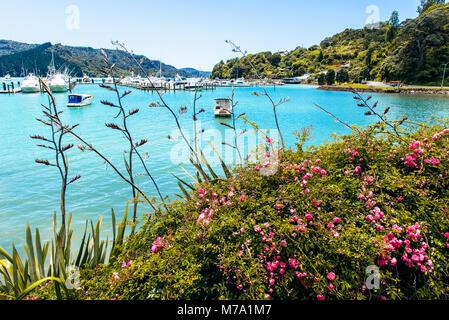 Marina at Whangaroa, North Island, New Zealand - Stock Photo
