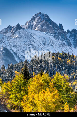 Mount Sneffels under snow, aspen grove in late fall, view from Dallas Creek Road, San Juan Mountains, Rocky Mountains, - Stock Photo