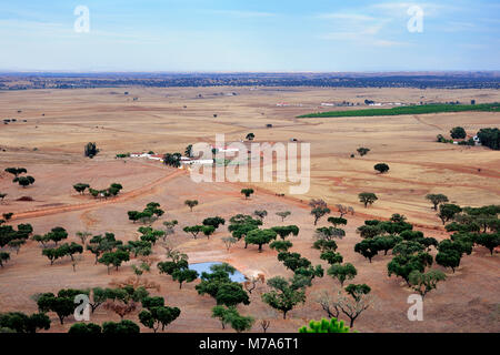 The vast Alentejo plain with cork trees, near Castro Verde, Portugal - Stock Photo