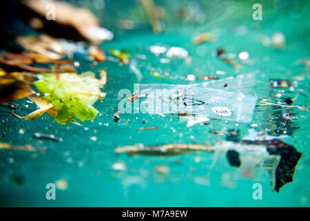 Trash floating on the Marseille shore line, Bouches-du-Rhône, France. Water pollution is largely caused by human - Stock Photo