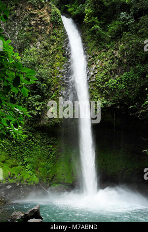The La Fortuna Waterfall stands out as being one of the most spectacular waterfalls in Costa Rica. - Stock Photo