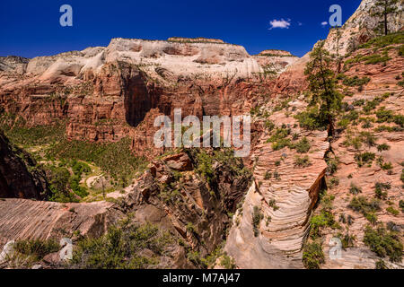 The USA, Utah, Washington county, Springdale, Zion National Park, Zion canyon close Virgin River and Angels Landing - Stock Photo