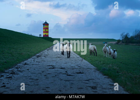 Germany, Lower Saxony, East Frisia, Krummhörn, the lighthouse of Pilsum, also known from the film with the comedian - Stock Photo