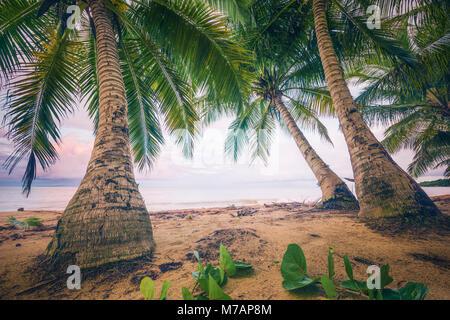 Beach scene in retro style on the Caribbean island Puerto Rico - Stock Photo