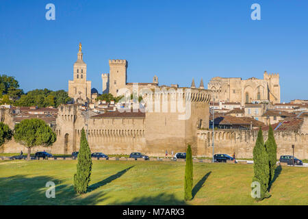 France, Provence region, Avignon city, the Popes Palace, skyline, W.H., - Stock Photo