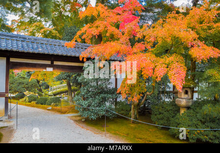 Japan,  Kyoto City, Imperial Palace Gardens - Stock Photo