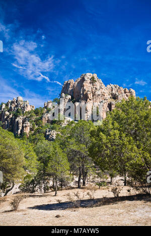 Low angle view of trees in front of rock formations, Sierra De Organos, Sombrerete, Zacatecas State, Mexico - Stock Photo