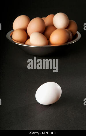 Close-up of a white egg with a bowl of brown eggs - Stock Photo