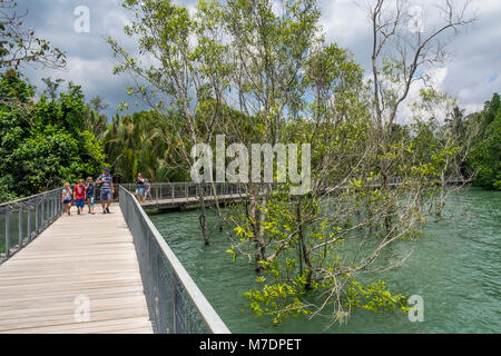 A family of Caucasian tourists walking on a mangrove boardwalk in Chek Jawa wetlands on the island of Pulau Ubin, - Stock Photo