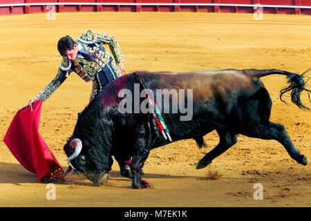 Bullfight during Feria de Abril Seville Fair, Plaza de toros de la Real Maestranza de Caballería de Sevilla Bullring, - Stock Photo