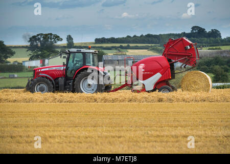 Baling straw in farm field, farmer works & drives red tractor pulling round baler (large bale just released) - Whixley, - Stock Photo