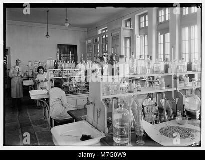Zionist activities in Palestine. The Hebrew University. Chemistry laboratory. LOC matpc.02659 - Stock Photo