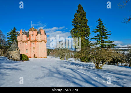CRAIGIEVAR CASTLE ABERDEENSHIRE SCOTLAND BLUE SKY  THE PINK TOWER SURROUNDED BY EVERGREEN FIR TREES AND DEEP WINTER - Stock Photo