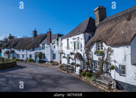 Beautiful row of thatched cottages and pub in Stokenham village - Stock Photo