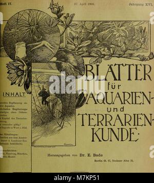 Blätter für Aquarien- und Terrarien-Kunde (1905) (20199344510) - Stock Photo