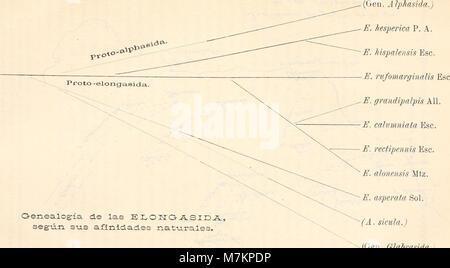 Boletín de la Sociedad Española de Historia Natural (1906) (20201930449) - Stock Photo