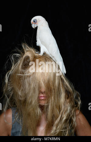 A woman with a cockatoo playing with her hair. - Stock Photo