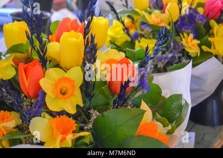 Closeup of tulips and daffodils at the farmers market - bouquets of color and scent - Stock Photo