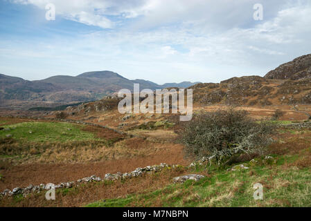 Landscape of autumn colour in the Snowdonia national park, Croesor, North Wales. - Stock Photo