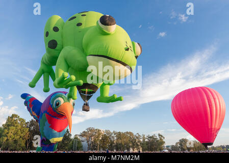 Canberra, Australia, 12th March, 2018. Hot air balloon festival in Canberra. Kermie the frog is a hot air balloon - Stock Photo