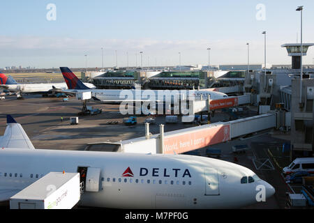Amsterdam, Netherlands - January 5, 2017: Uploading foods into the passenger aircraft of Delta Air Lines in the - Stock Photo
