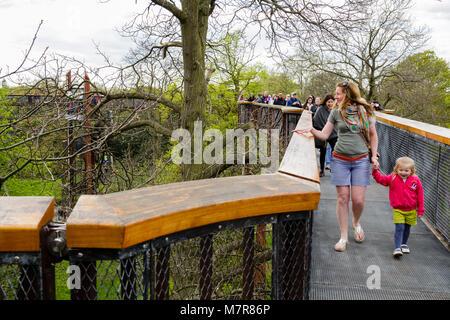 London, UK - April 18, 2014. Treetop Walkway at Kew Botanic Gardens. The walkway allows visitors to walk through - Stock Photo