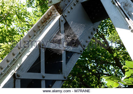 Spider Web on Truss Bridge. A spider has made a home on the Valkommen Trail Bridge. A nature hike in Lindsborg Kansas - Stock Photo