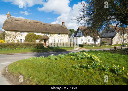 Charming thatched cottages and daffodils in Martin village in Hampshire, UK - Stock Photo
