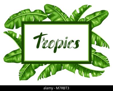 Frame with banana leaves. Decorative image of tropical foliage Stock ...
