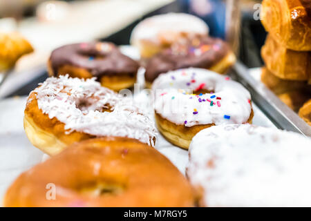 White glaze iced donuts with rainbow sprinkles, coconut flakes on tray in fresh bakery store shop deep fried vanilla - Stock Photo