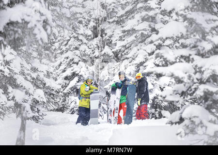 Group of skiers and snowboarders are choosing offpiste track through forest slope. Ski resort concept - Stock Photo