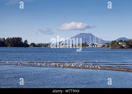 Sitka, Alaska: View of Crescent Bay from Sitka National Historical Park. In the distance is the John O'Connell Bridge - Stock Photo