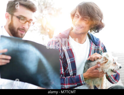 veterinarian showing an x-ray to the owner of the dog. - Stock Photo