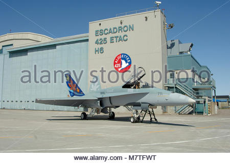 A CF-18Hornet from the 2006 demo team, piloted by Captain. - Stock Photo