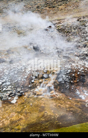 Sunbeam Hot Springs steaming in Salmon River Valley, Land of the Yankee Fork, near Sunbeam, Salmon River Scenic - Stock Photo
