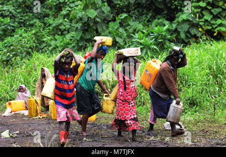 Congolese villagers fill their water supply from this Muddy pond. The only good water source they have. - Stock Photo