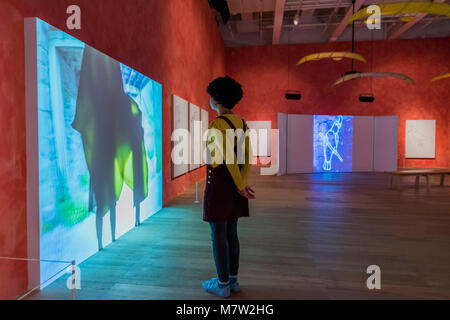 London, UK. 13th March, 2018. Stream or River, Flight or Pattern - Joan Jonas, Tate Modern opens largest survey - Stock Photo