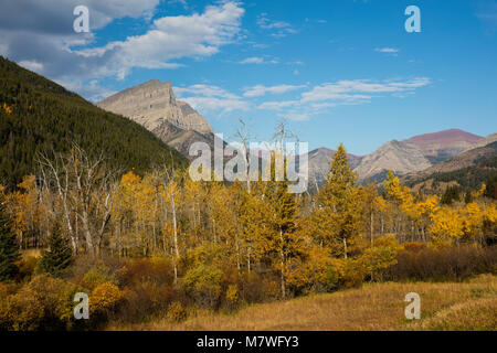 Mount Anderson (Anderson Peak) as seen from the Red Rock Parkway in autumn, Waterton Lakes National Park, Alberta, - Stock Photo