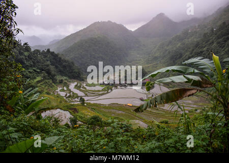Rice Terraces in the Philippines - Stock Photo
