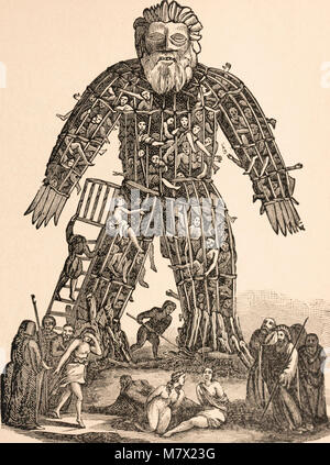 Wicker man.  Large wooden or cane hollow wickerwork statue used by Druid priests.  Reportedly, victims were placed - Stock Photo