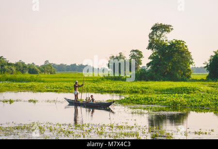 Father and son set nets and traps for shell fish at dawn in a lagoon in their tradition dugout wooden boat on August - Stock Photo