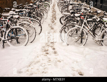 rows of bicycles locked up in bicycle park in the snow London uk - Stock Photo